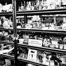 The Thrift Store by Scott Mitchell