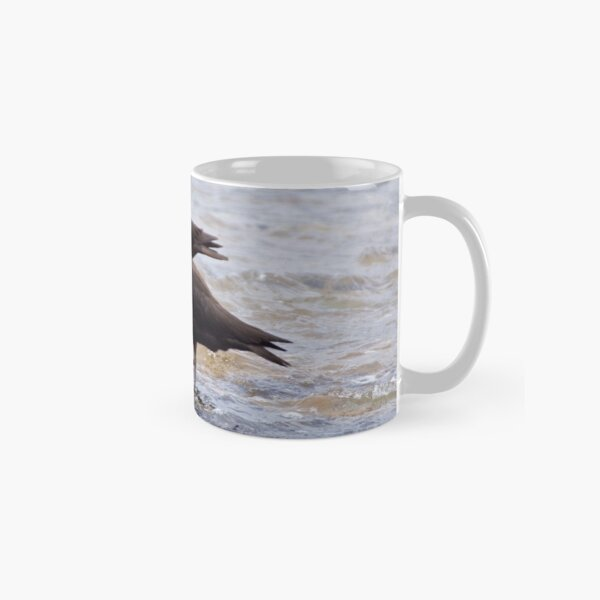 SHOREBIRD ~ Sooty Oystercatcher by David Irwin Classic Mug