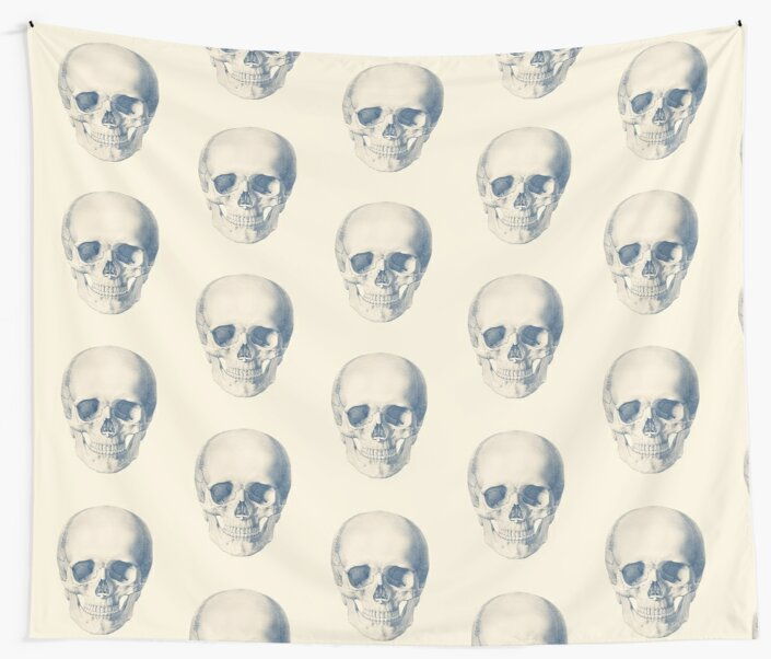 Full Human Skull Front Facing View Vintage Anatomy Wall