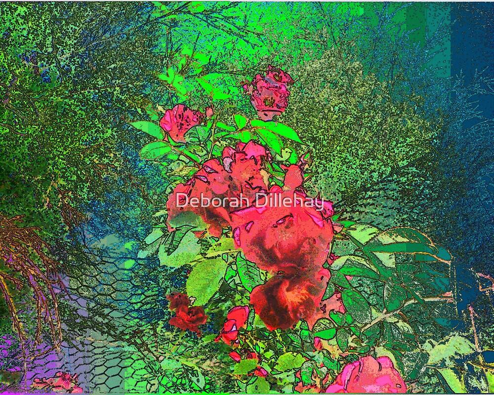 Fenceline Roses by Deborah McCormick