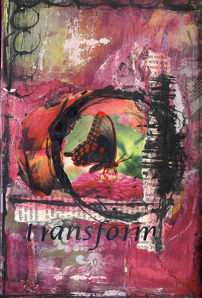 Transform by Clare Reid