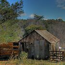 Hill End Shack by pedroski