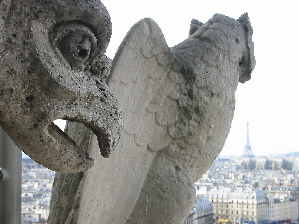 Paris view from Notre Dame by Quinton Smith