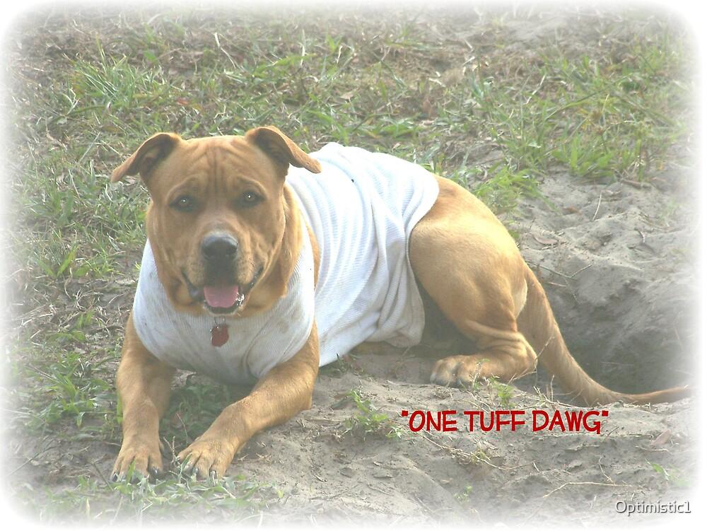 One Tuff Dawg by Optimistic1