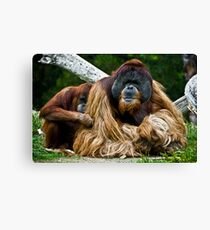 Protect Me Canvas Print