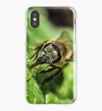 Bee 2 (Apis mellifera) iPhone Case/Skin
