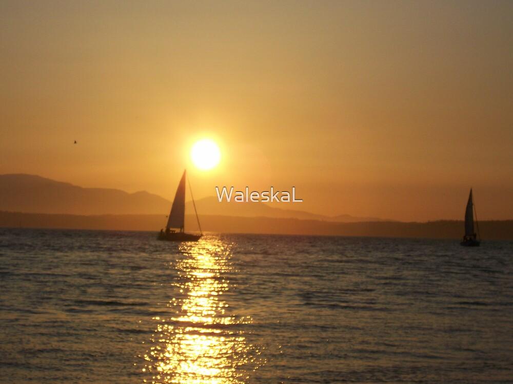 Yellow Sun by WaleskaL