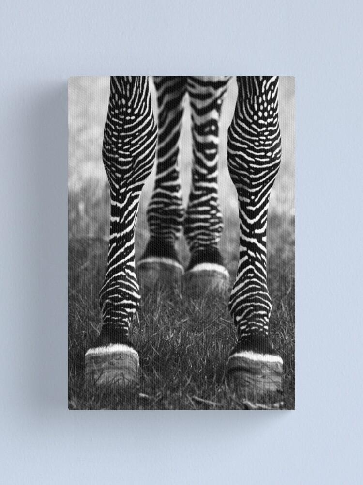 Alternate view of Zeb Legs Canvas Print