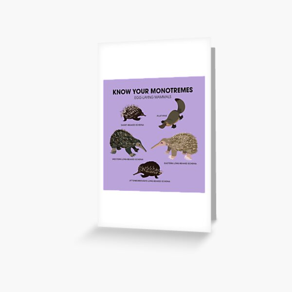 Know Your Monotremes Greeting Card