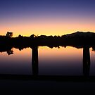 Sunset on North Johnstone River 23rd May 2009 by Ron  Wilson