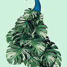 MONSTERA BIRD by JonasLoose