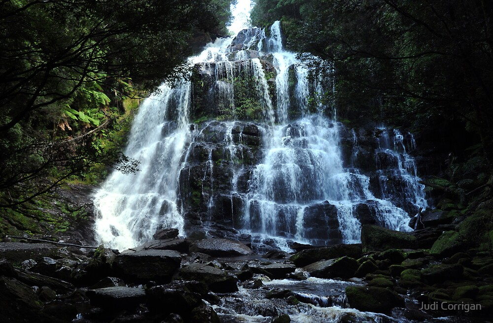 Nelson Falls ~ Tasmania by Judi Corrigan