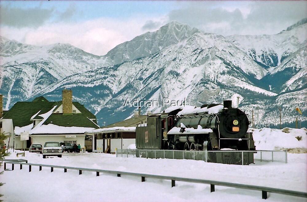 Snowed in - Jasper Alberta Canada by Adrian Paul