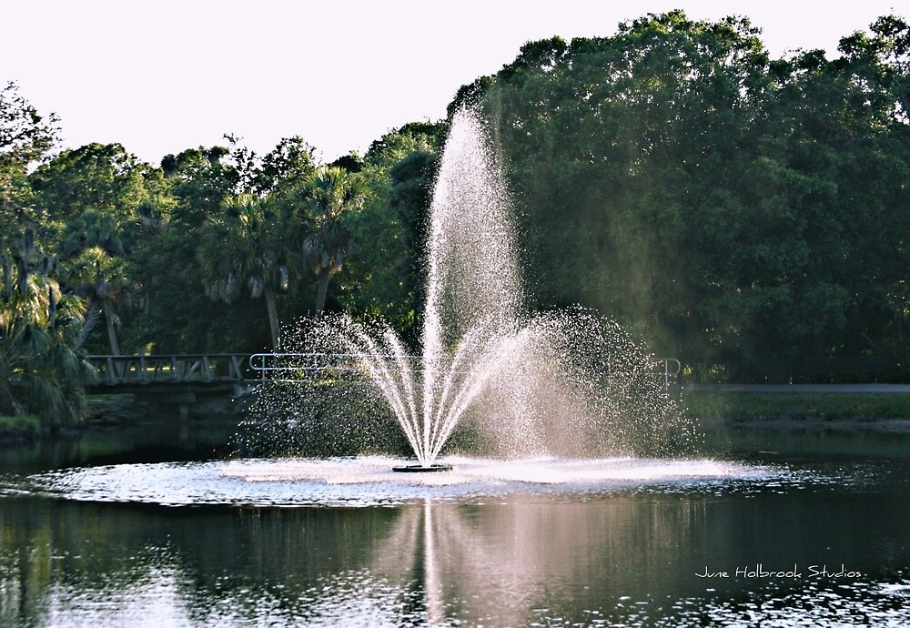 Fountain by June Holbrook