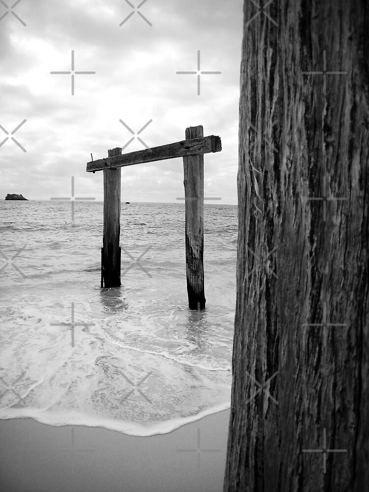 Hamelin Bay Jetty, Western Australia by daynov