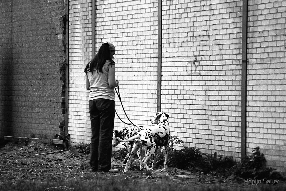 Woman With Dalmatians by Pepijn Sauer