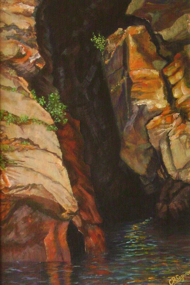 Wilderness Touchstone by Carol Seymour