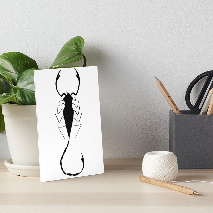 Scorpion Geometrique Noir Et Blanc Impressions Rigides Par