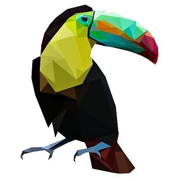 Polygonal Toucan Bird by seingalad