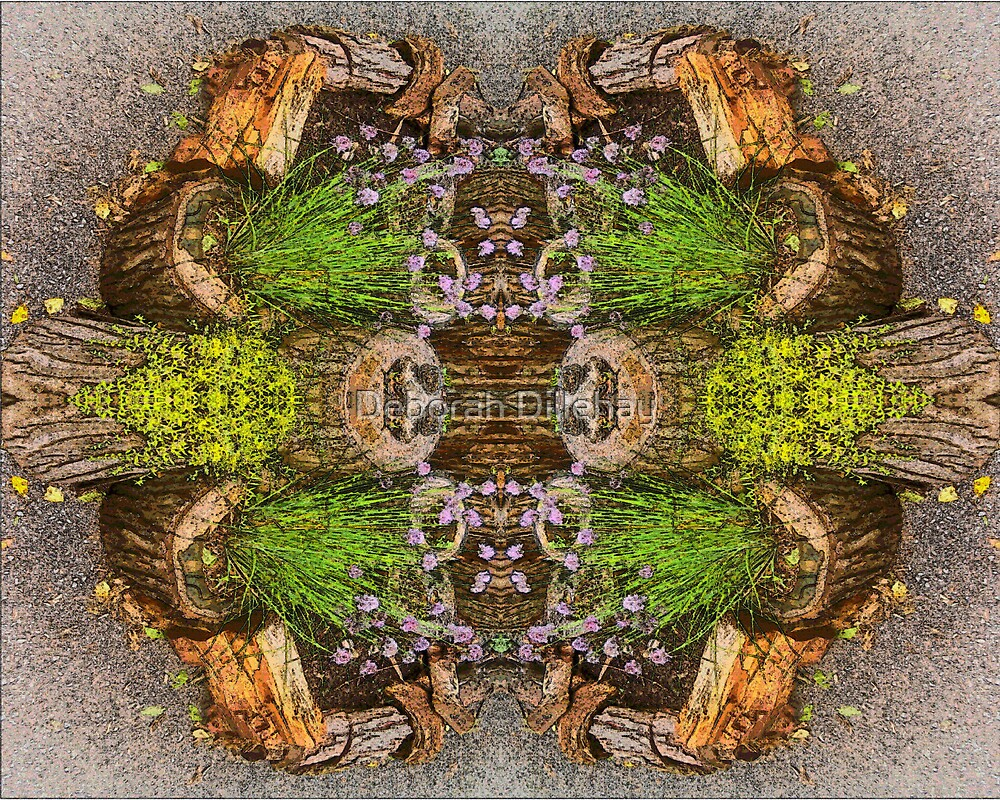 Stump Garden Symmetry by Deborah McCormick