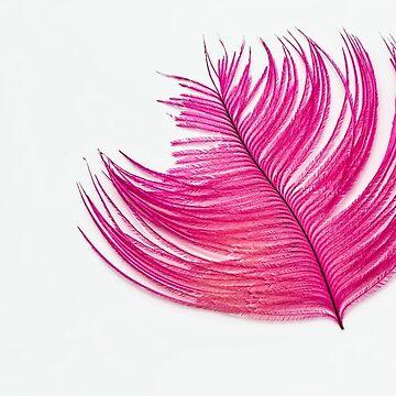 Feather art by belka