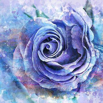 Rose modern art  by belka