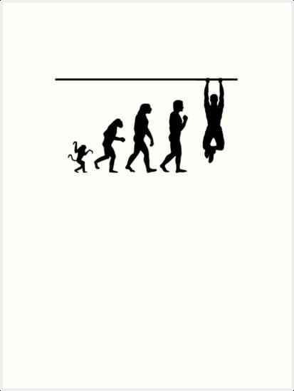 Crossfit Evolution By Handcraftline