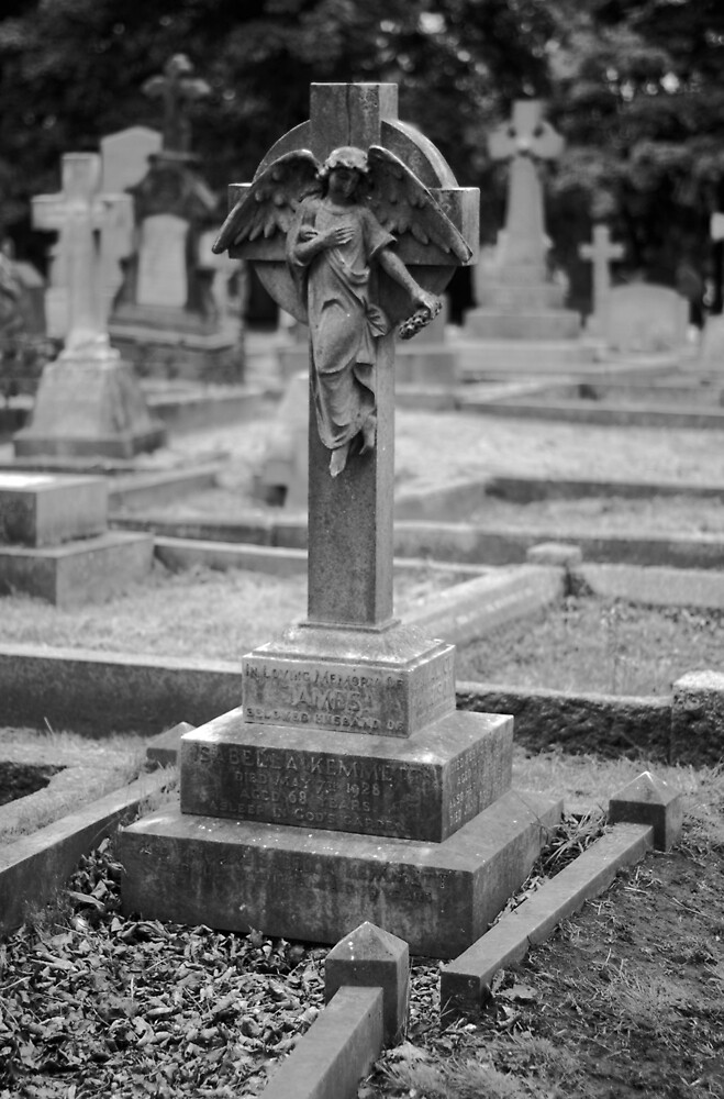 Angel In Cemetery by Ian Marshall