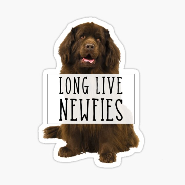 Long Live Newfies - With Sign Sticker