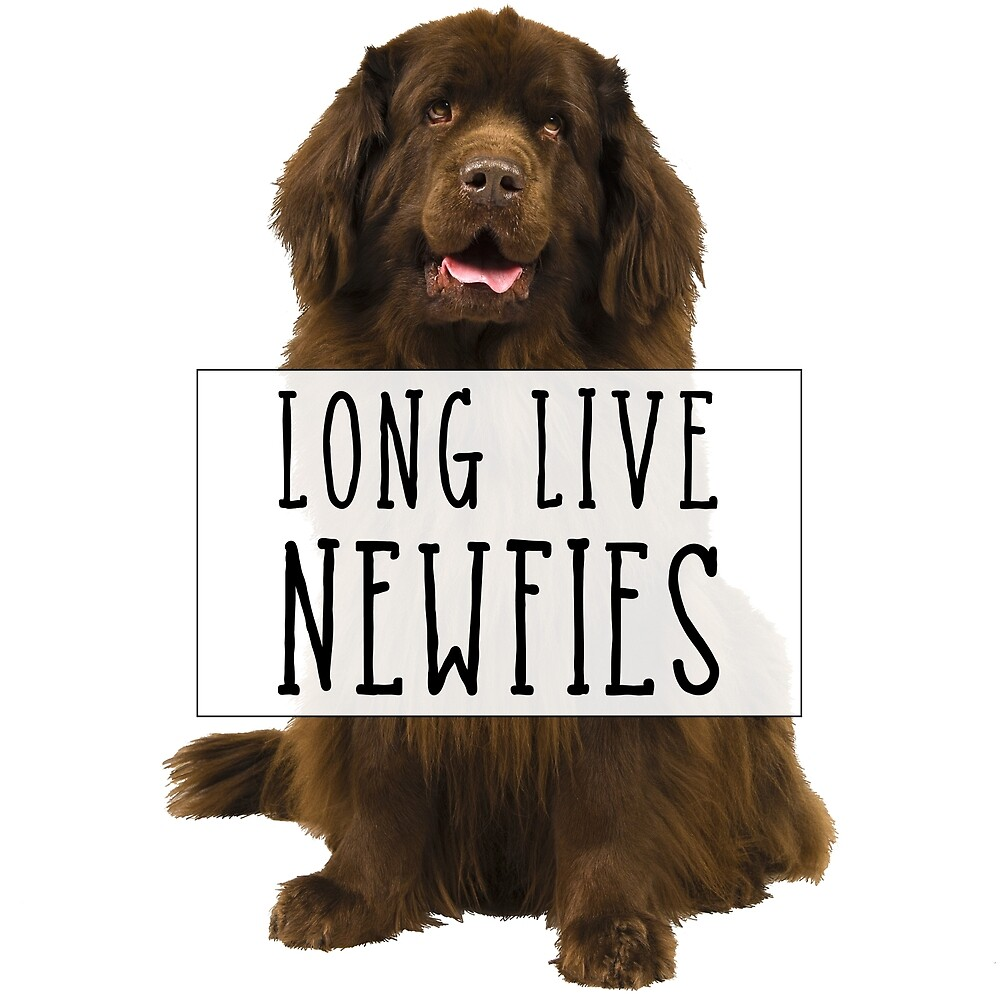 Long Live Newfies - With Sign by Christine Mullis