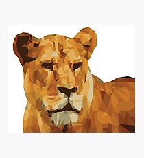 LIONESS Pop Art Photographic Print