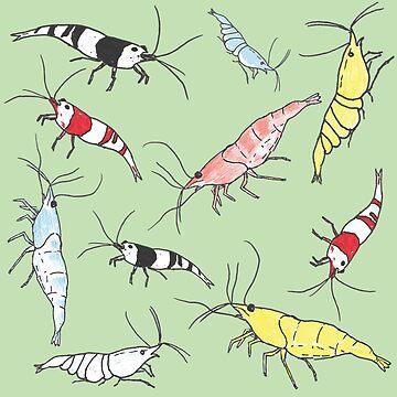 Aquarium Shrimp Pattern by dofthec