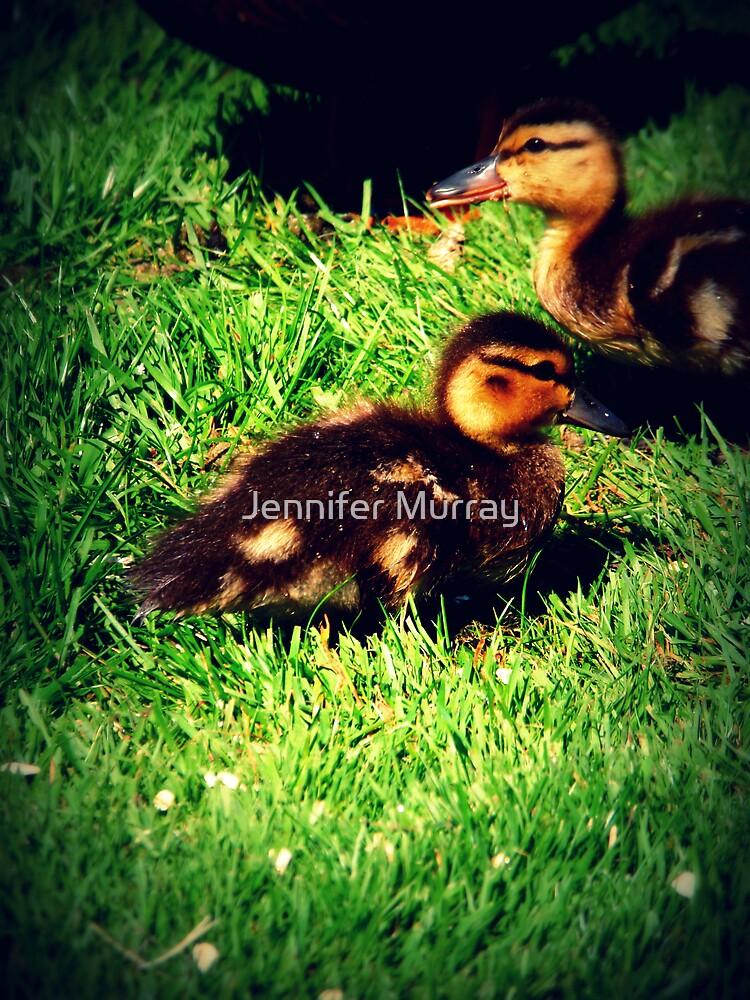 Just Ducky by Jennifer Murray