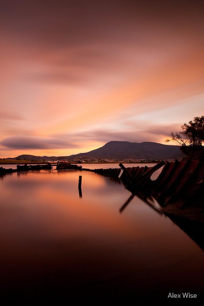 Otago Bay by Alex Wise