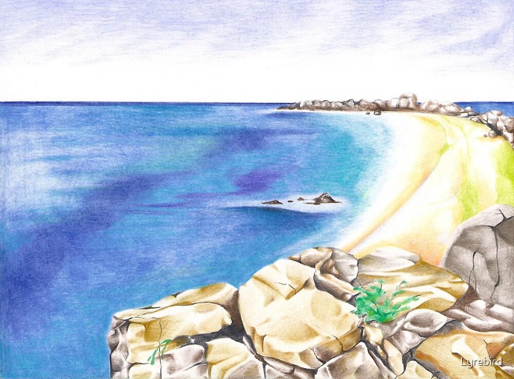 The Coast by Lyrebird