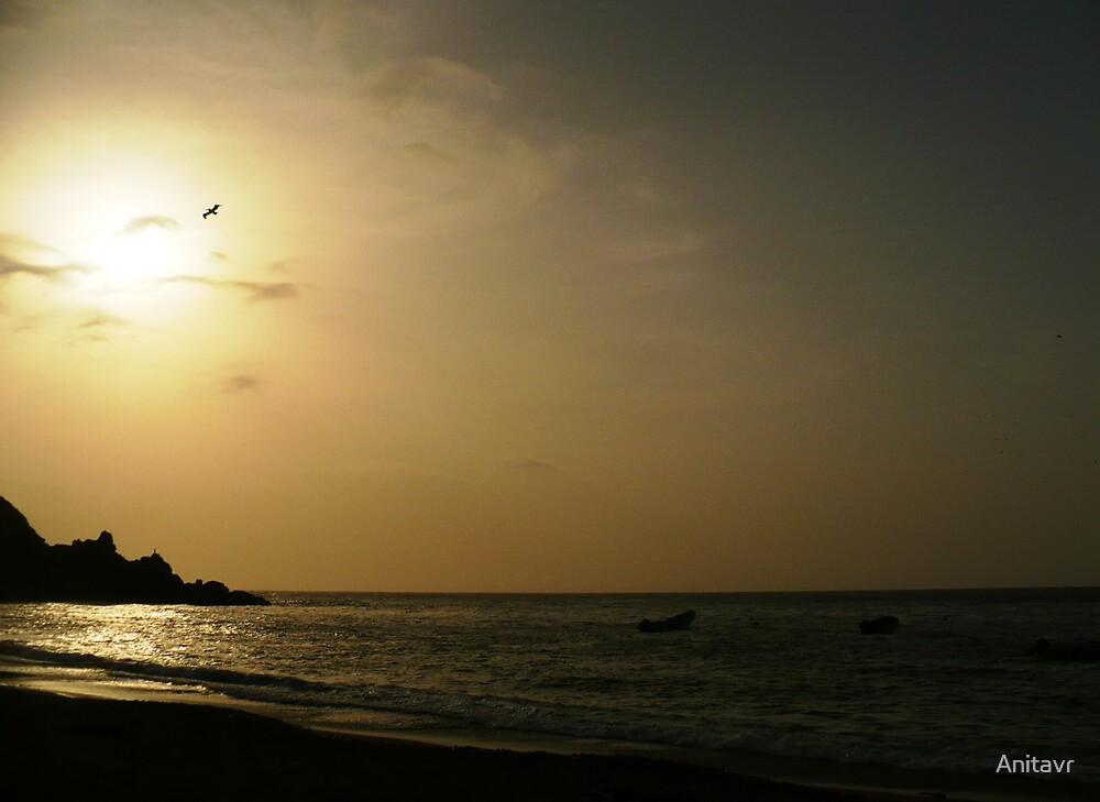 Sunset chichiriviche by Anitavr