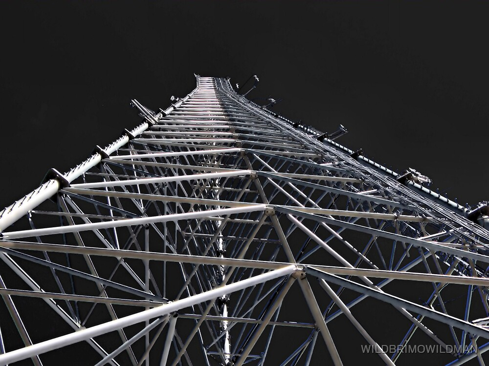 The Tower by WILDBRIMOWILDMAN