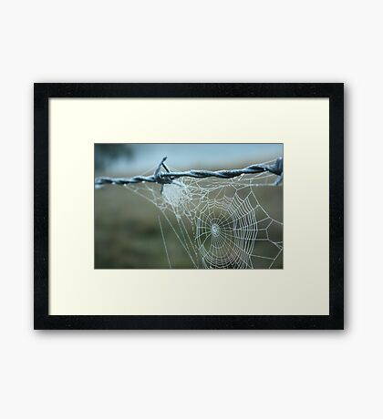 early morning droplets Framed Print