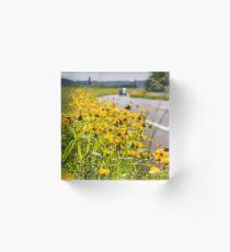 Roadside Flowers Acrylic Block