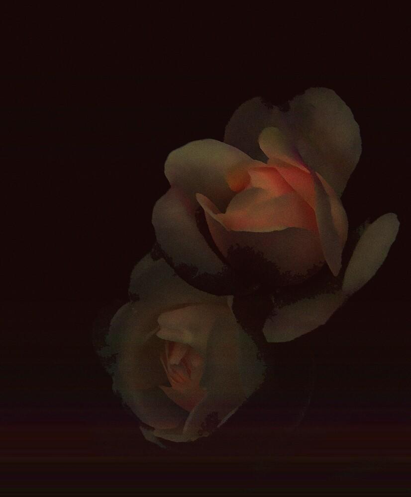 Soft and dark by Judi Taylor