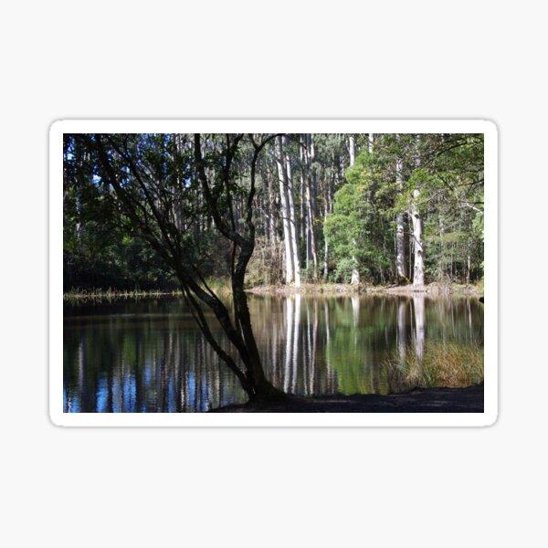 Sanitorium Lake, Victoria Sticker