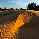 Perry sand hills Wentworth NSW by David  Hibberd