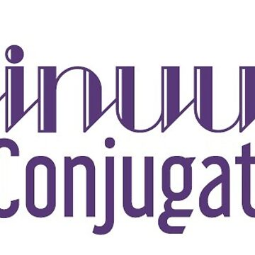 Continuum 14 Text Logo by ContinuumCon