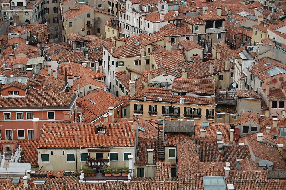 Venice Roof tops by Corrie Wharton