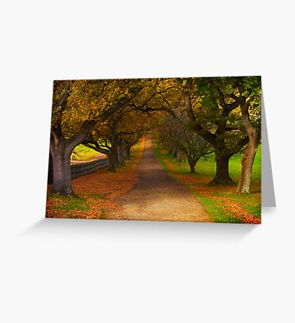 Avenue of Lost Souls Greeting Card