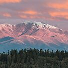 Mount  Feathertop by Robert Armitage
