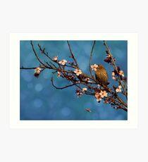 Bird n Blossoms Art Print