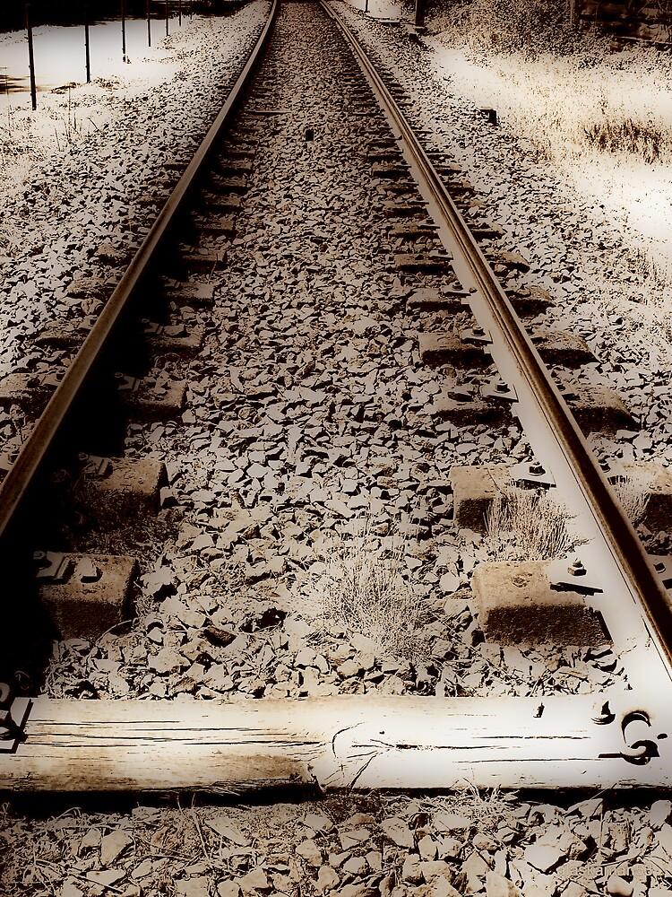 Railroad in Puurs, Belgium by alaskaman53