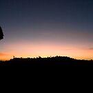 Kenya sunrise by David Clarke