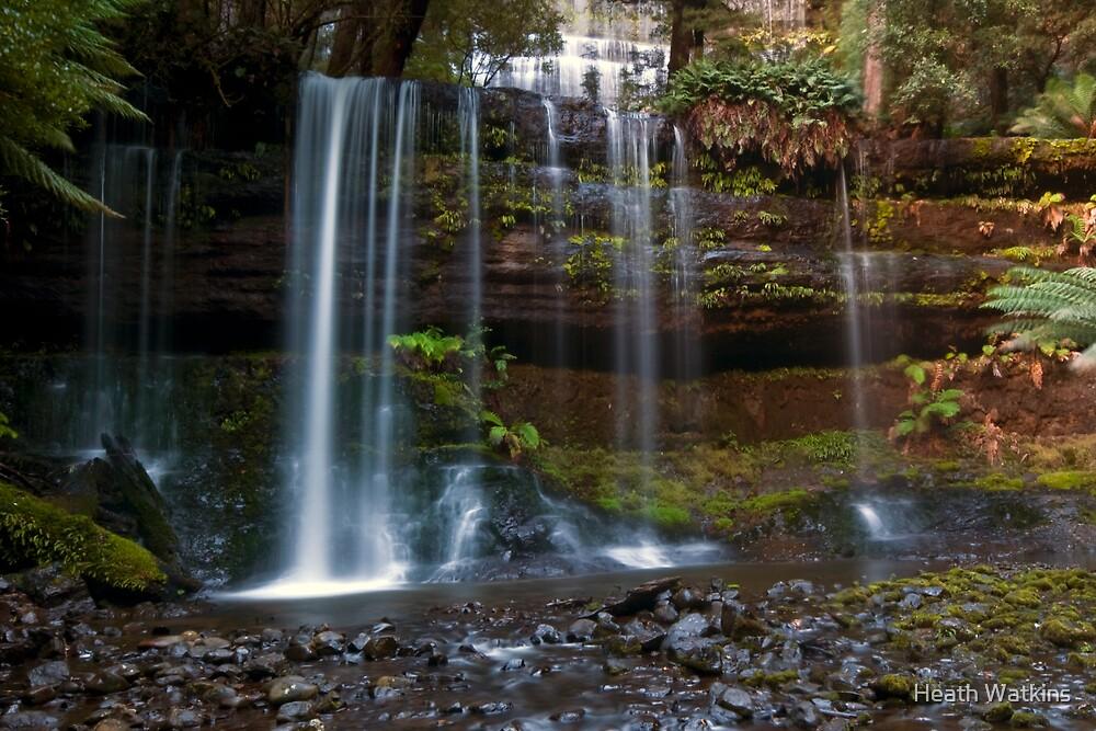 Russel Falls by Heath Watkins